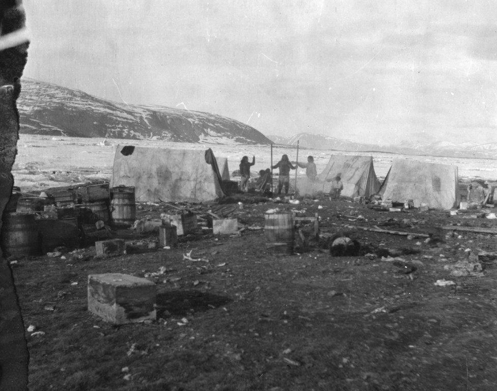 A historic photograph showing an Inughuit camp with hide tents. The camp is on the coast with sea ice visible in the background.