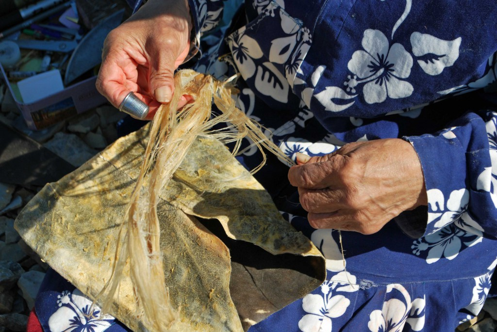 A photograph showing an Inuit woman making sewing thread from caribou sinew. She is gently separating the sinew using her hands and fingers.
